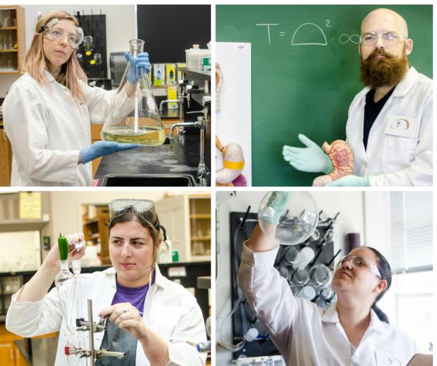 taco-scientists