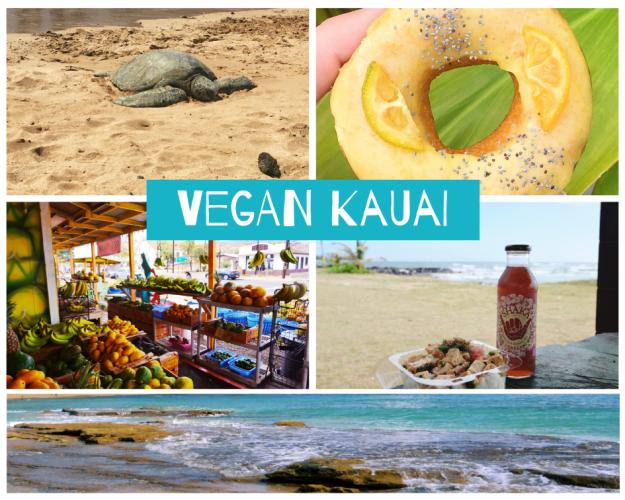 vegan-kauai-1
